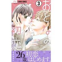 おとなの初恋【マイクロ】 3