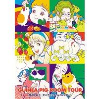 GUINEA PIG ROOM TOUR