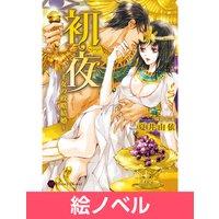 【絵ノベル】初夜〜王女の政略結婚〜 2