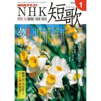 NHK 短歌 2019年1月号
