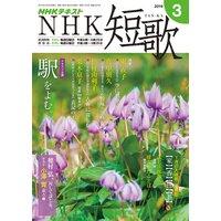 NHK 短歌 2019年3月号