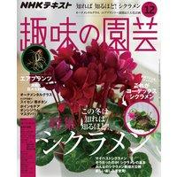 NHK 趣味の園芸 2019年12月号