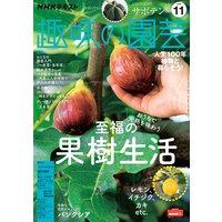 NHK 趣味の園芸 2020年11月号