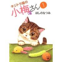 キジトラ猫の小梅さん