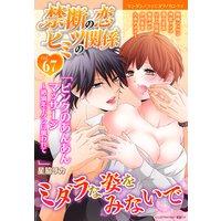禁断の恋 ヒミツの関係 vol.67