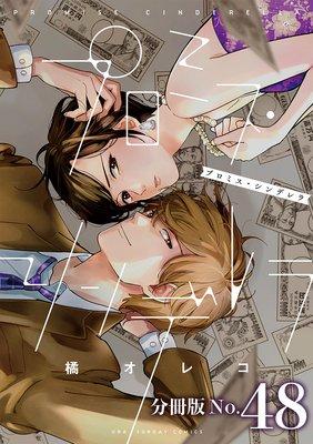 プロミス・シンデレラ【単話】 48