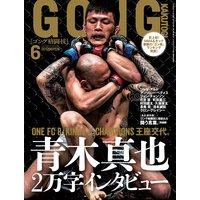 ゴング格闘技 2013年6月号